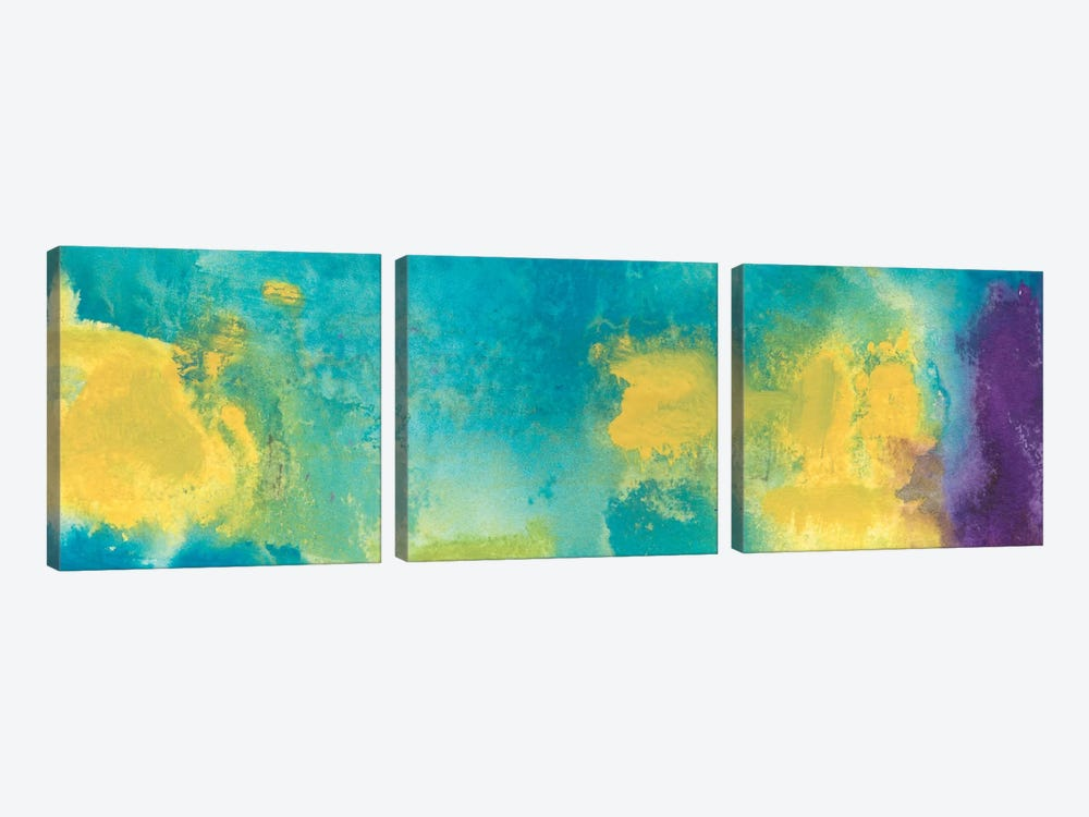Bewilder by Michelle Oppenheimer 3-piece Canvas Artwork