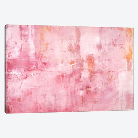 Pink Mirrors Canvas Print #OPP60} by Michelle Oppenheimer Canvas Art Print