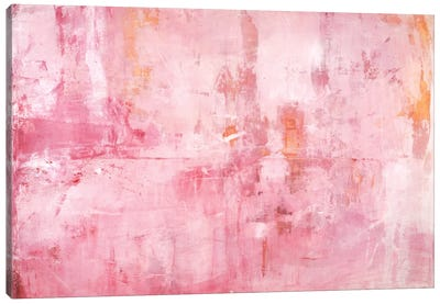 Pink Mirrors Canvas Print #OPP60