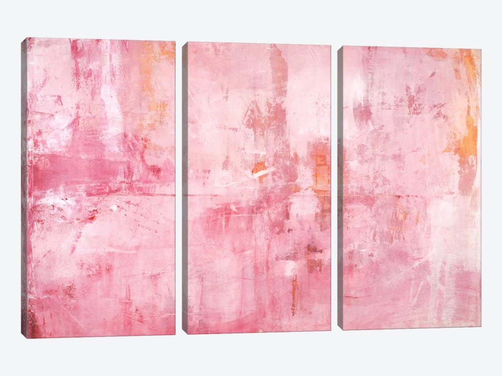 Pink Mirrors by Michelle Oppenheimer 3-piece Canvas Art Print
