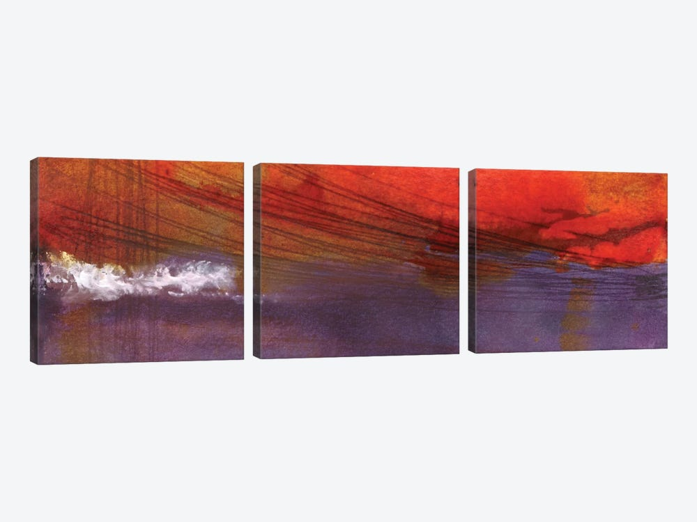 Plum Clouds by Michelle Oppenheimer 3-piece Canvas Artwork