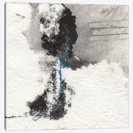 Shadows I Canvas Print #OPP71} by Michelle Oppenheimer Canvas Wall Art