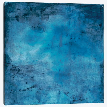 Blue Lagoon Canvas Print #OPP9} by Michelle Oppenheimer Canvas Art