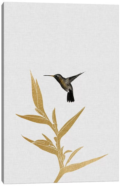Hummingbird & Flower I Canvas Art Print