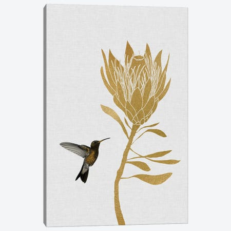 Hummingbird & Flower II Canvas Print #ORA109} by Orara Studio Canvas Wall Art