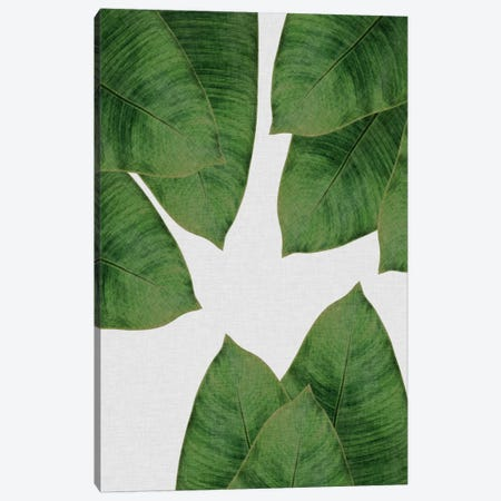 Banana Leaf I Canvas Print #ORA10} by Orara Studio Canvas Wall Art