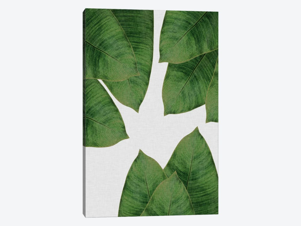 Banana Leaf I by Orara Studio 1-piece Canvas Wall Art