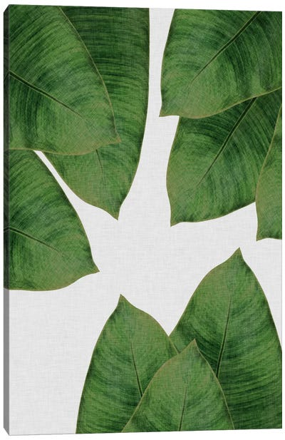 Banana Leaf I Canvas Art Print