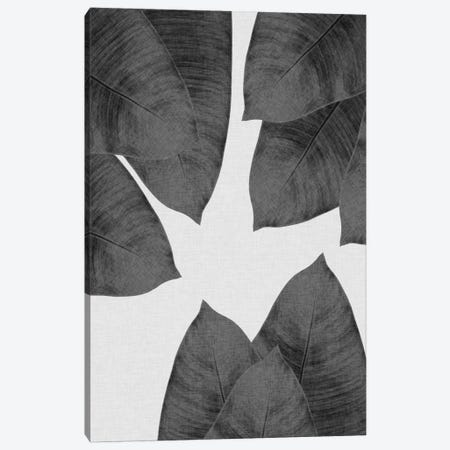 Banana Leaf I B&W Canvas Print #ORA11} by Orara Studio Canvas Art