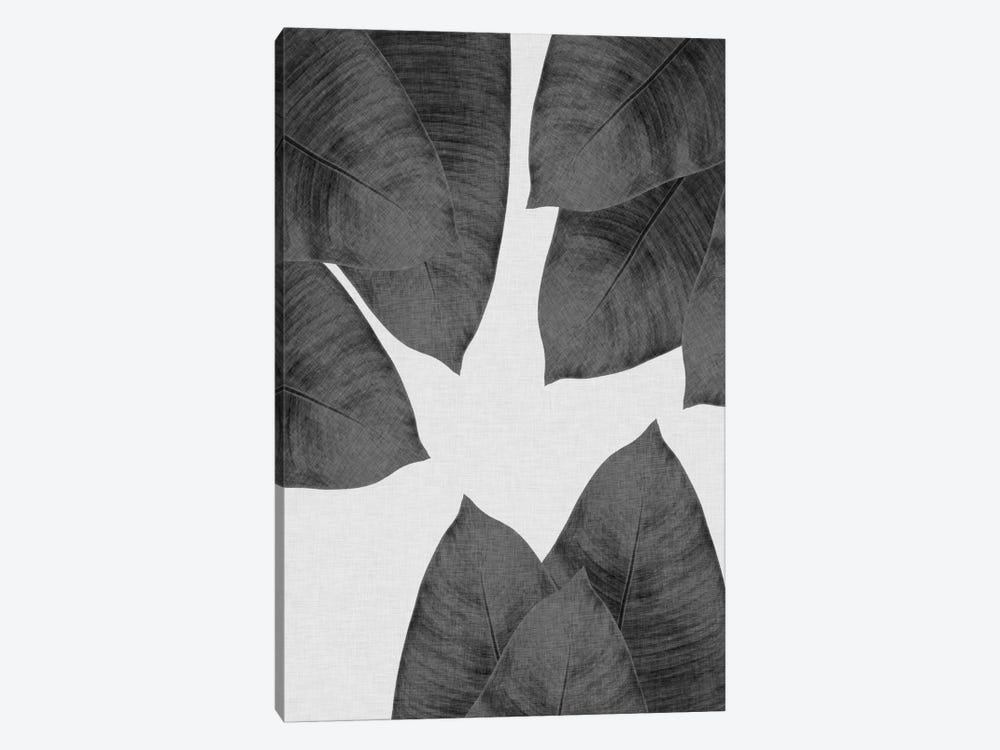 Banana Leaf I B&W by Orara Studio 1-piece Canvas Print