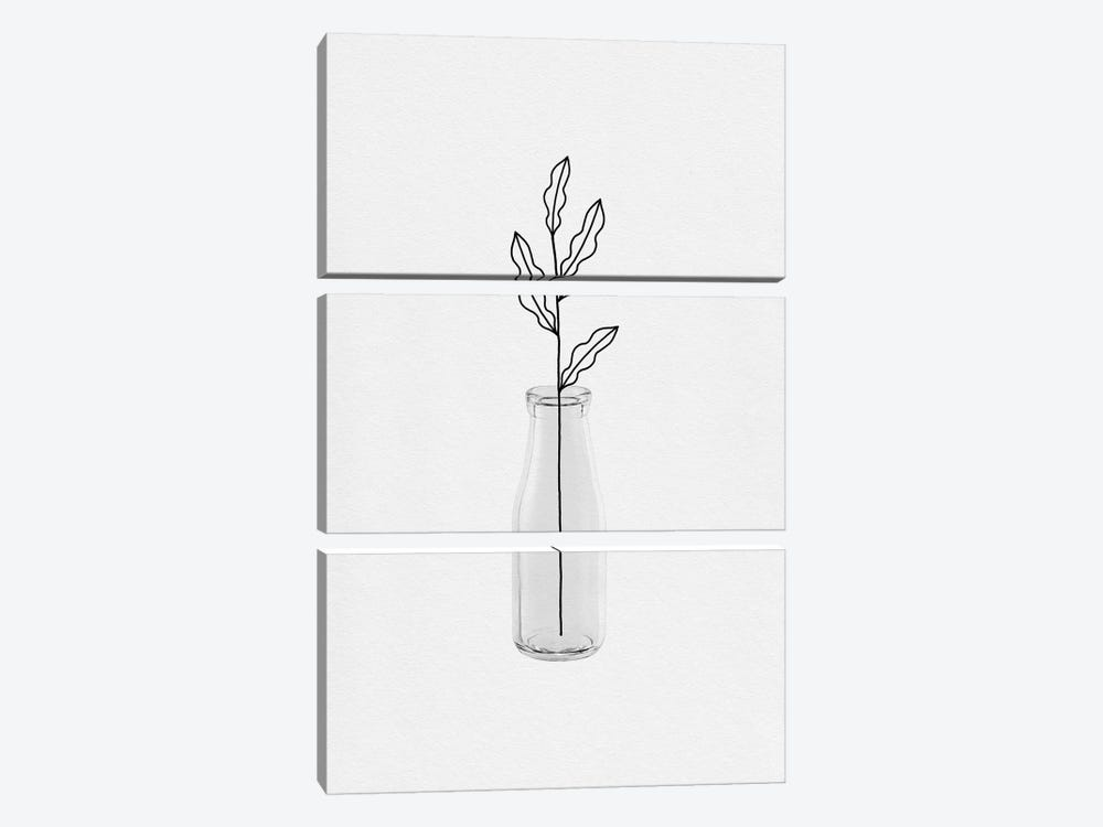 Leaf Still Life by Orara Studio 3-piece Canvas Wall Art