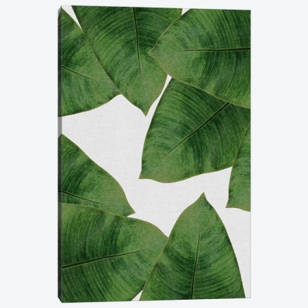 Banana Leaf II Canvas Print #ORA12} by Orara Studio Canvas Art