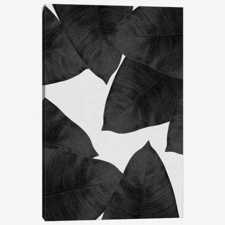 Banana Leaf II B&W Canvas Print #ORA14} by Orara Studio Canvas Art Print