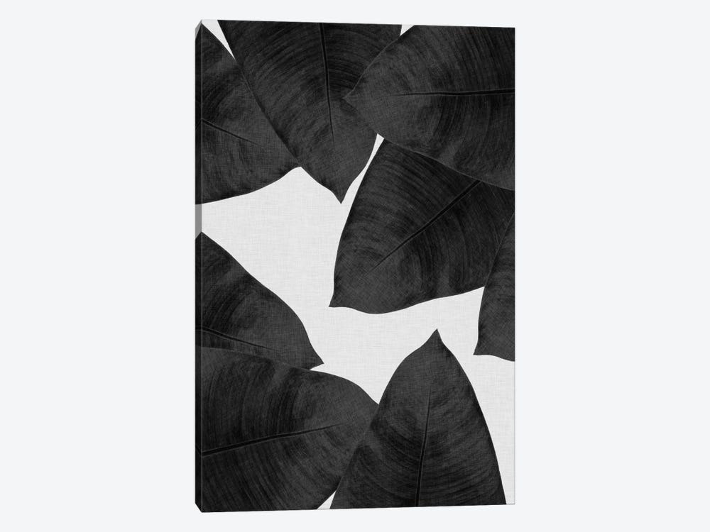 Banana Leaf II B&W by Orara Studio 1-piece Canvas Art