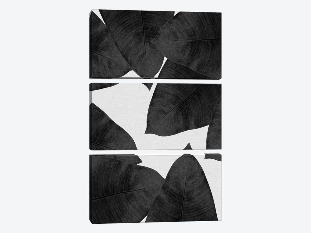 Banana Leaf II B&W by Orara Studio 3-piece Canvas Wall Art