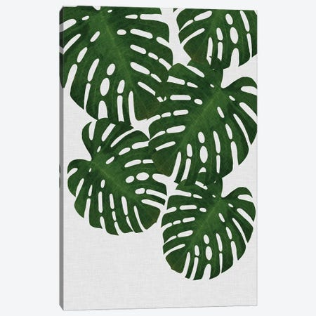 Monstera Leaf II Canvas Print #ORA156} by Orara Studio Canvas Art
