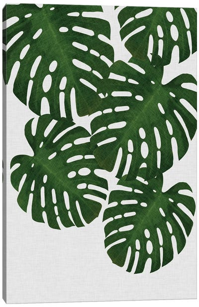 Monstera Leaf II Canvas Art Print