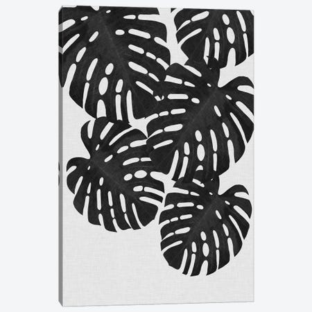 Monstera Leaf II B&W Canvas Print #ORA157} by Orara Studio Canvas Wall Art