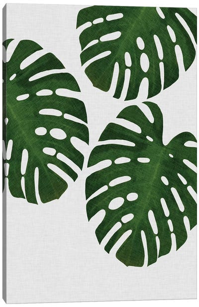 Monstera Leaf III Canvas Art Print