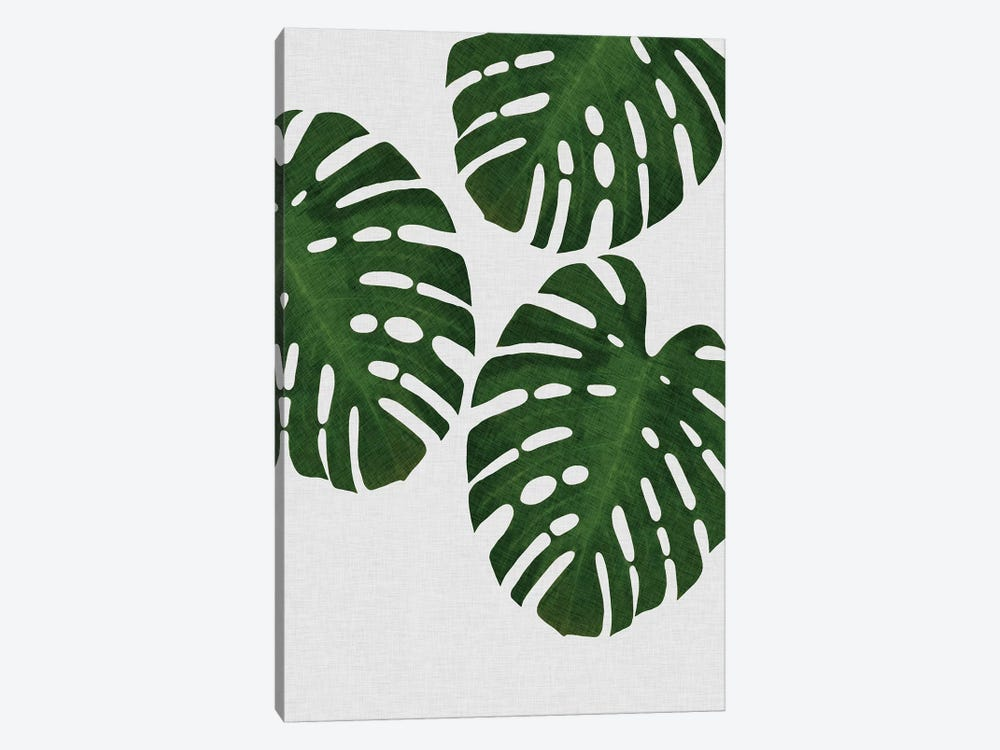 Monstera Leaf III by Orara Studio 1-piece Canvas Artwork