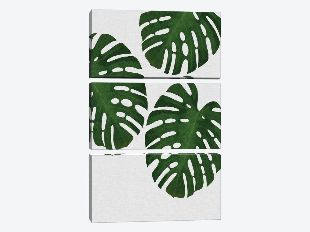 Monstera Leaf III by Orara Studio 3-piece Canvas Artwork