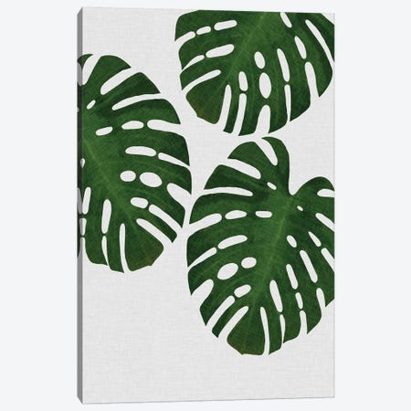 Monstera Leaf III Canvas Print #ORA158} by Orara Studio Art Print