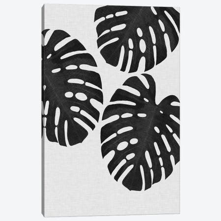 Monstera Leaf III B&W Canvas Print #ORA159} by Orara Studio Art Print
