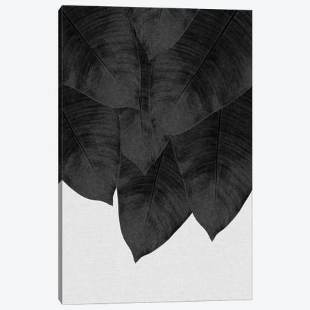 Banana Leaf III B&W Canvas Print #ORA15} by Orara Studio Art Print
