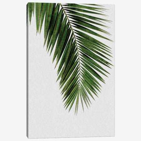 Palm Leaf I Canvas Print #ORA170} by Orara Studio Art Print