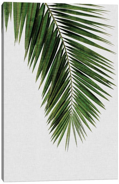 Palm Leaf I Canvas Art Print