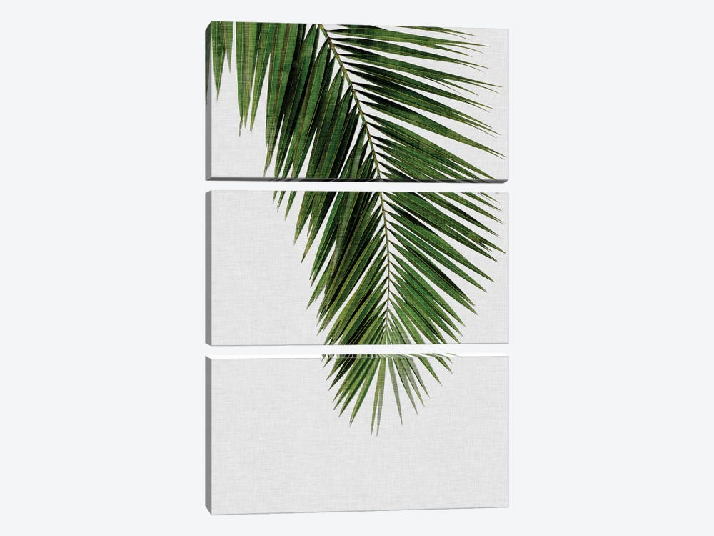 Palm Leaf I 3-piece Canvas Artwork