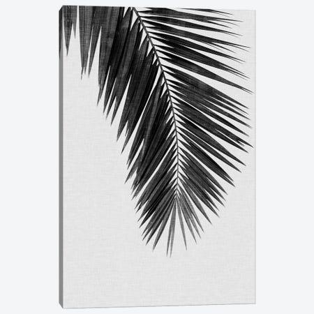 Palm Leaf I B&W Canvas Print #ORA171} by Orara Studio Canvas Art Print