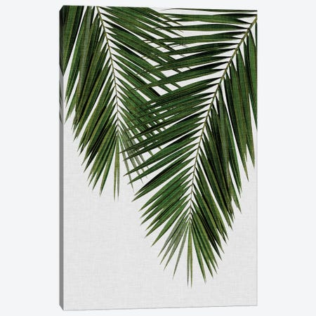 Palm Leaf II Canvas Print #ORA173} by Orara Studio Art Print