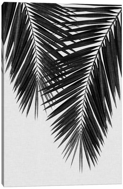 Palm Leaf II B&W Canvas Art Print