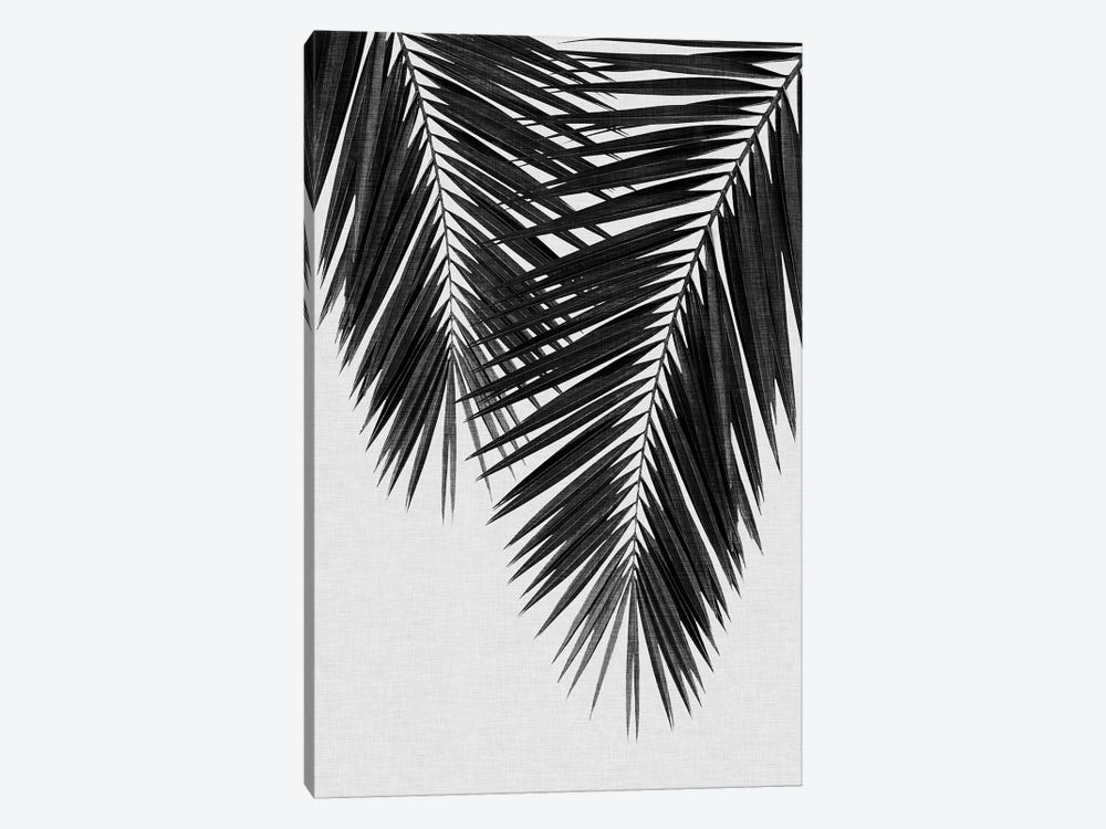 Palm Leaf II B&W by Orara Studio 1-piece Canvas Wall Art