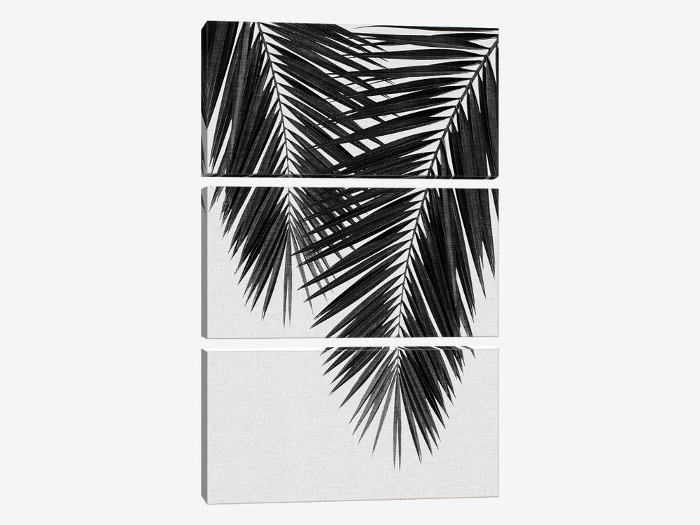 Palm Leaf II B&W by Orara Studio 3-piece Canvas Art