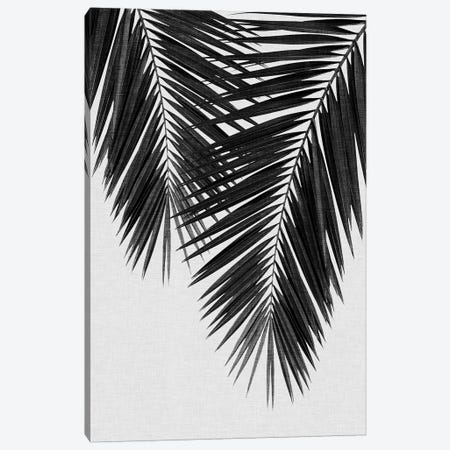 Palm Leaf II B&W Canvas Print #ORA174} by Orara Studio Canvas Wall Art