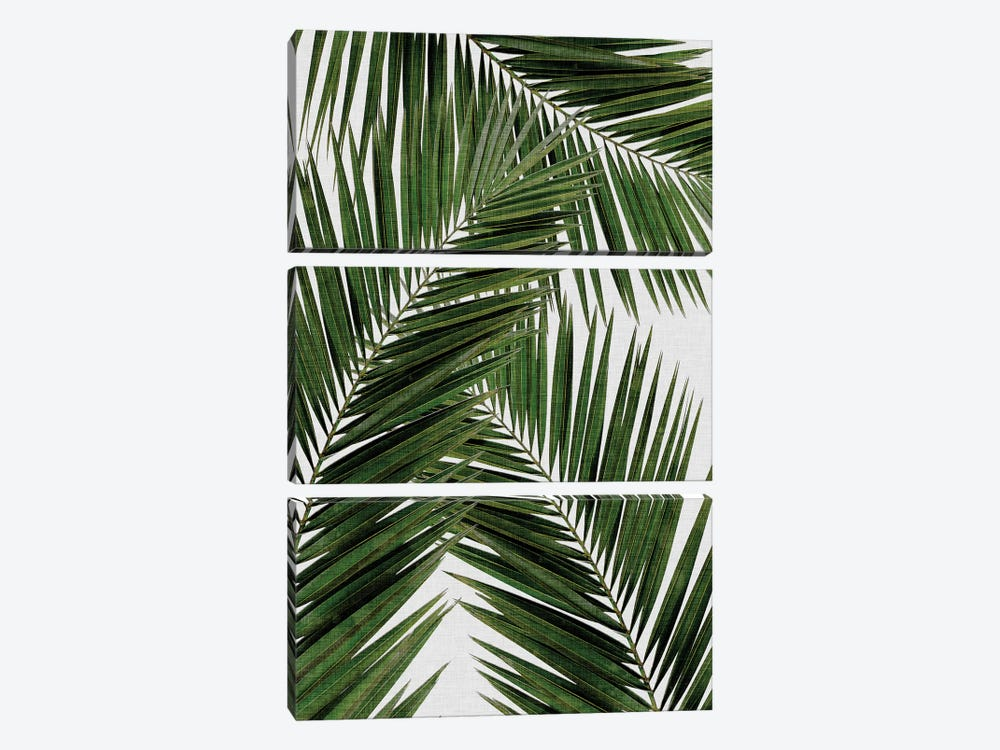 Palm Leaf III by Orara Studio 3-piece Canvas Art