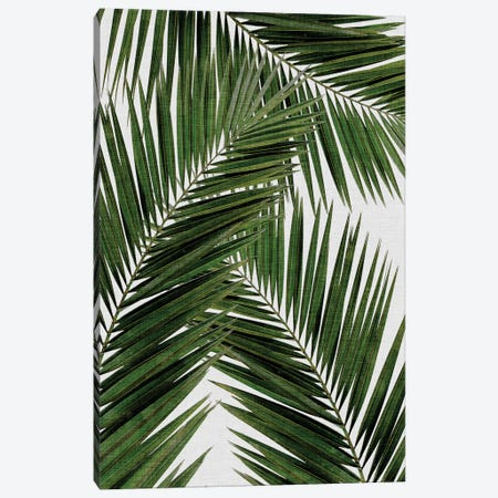 Palm Leaf III Canvas Print #ORA176} by Orara Studio Canvas Wall Art