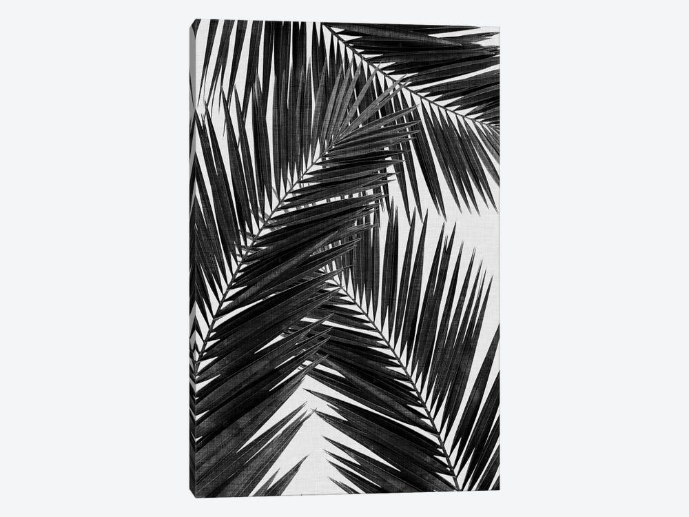 Palm Leaf III B&W by Orara Studio 1-piece Art Print