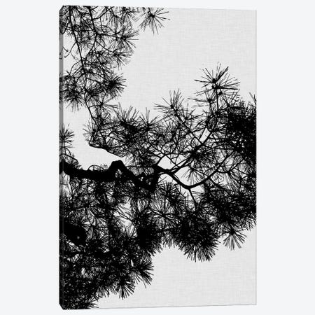 Pine Tree Canvas Print #ORA190} by Orara Studio Canvas Art Print