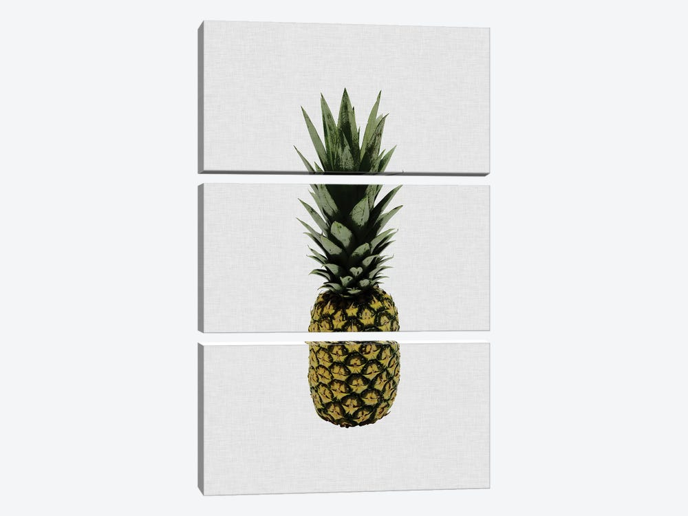 Pineapple I by Orara Studio 3-piece Art Print