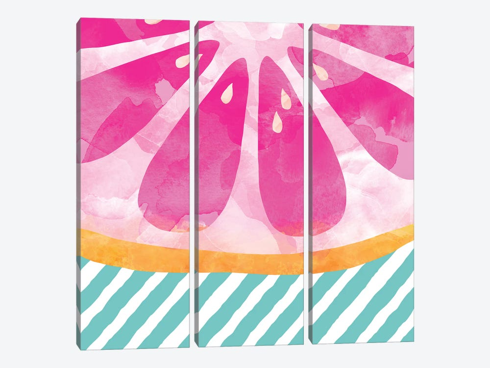 Pink Grapefruit Abstract by Orara Studio 3-piece Canvas Art Print