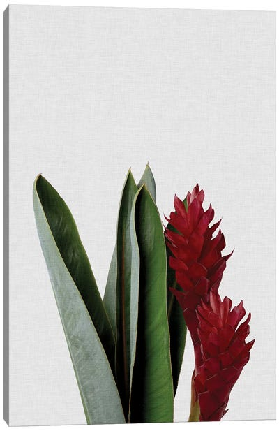 Red Flower Canvas Art Print