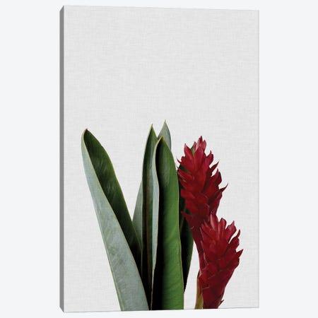 Red Flower Canvas Print #ORA197} by Orara Studio Canvas Artwork