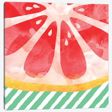 Red Grapefruit Abstract Canvas Print #ORA198} by Orara Studio Canvas Print