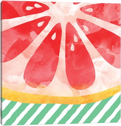 Red Grapefruit Abstract Canvas Art Print