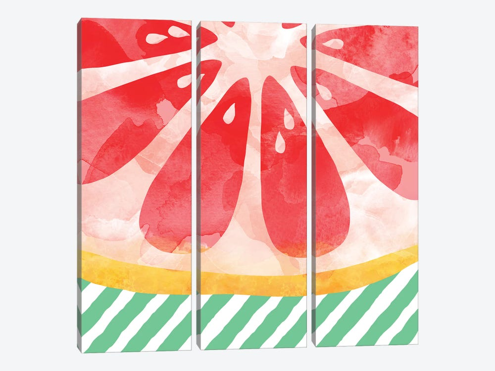 Red Grapefruit Abstract by Orara Studio 3-piece Canvas Wall Art
