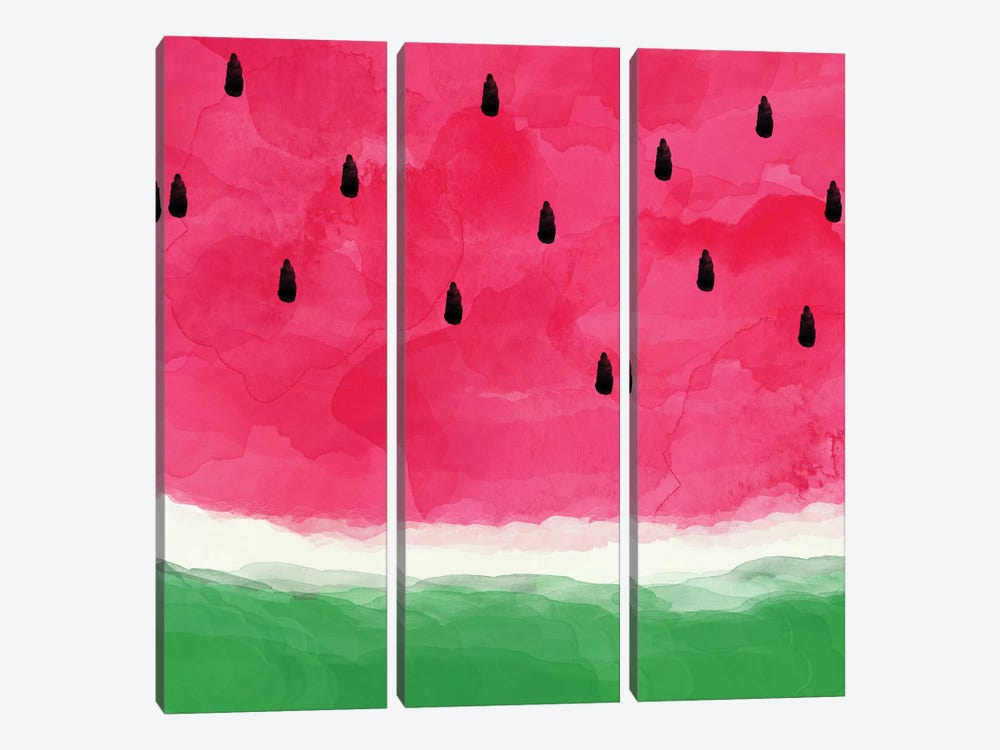 Watermelon Abstract 3-piece Canvas Art Print