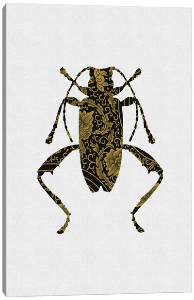 Black & Gold Beetle IV Canvas Art Print